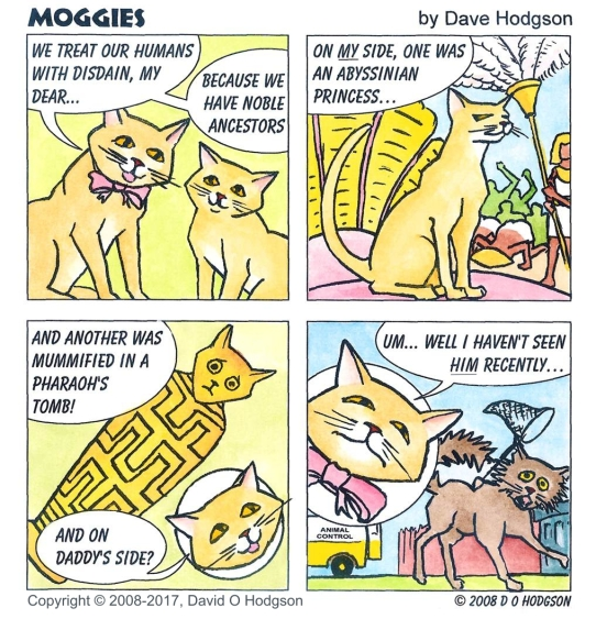 Moggies: Royal Blood