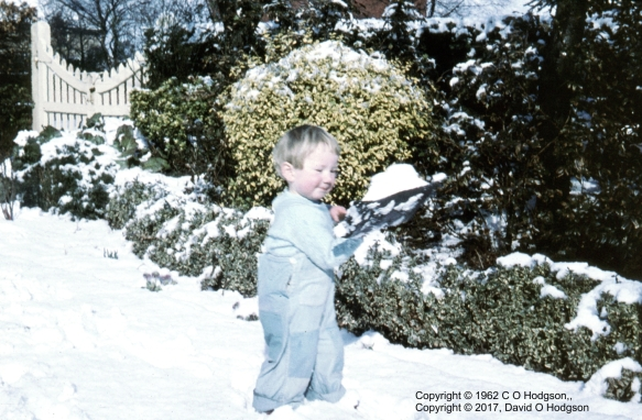 Snow in the Garden, February 1962