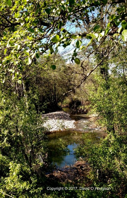 Santa Rosa Creek at Melitta Station