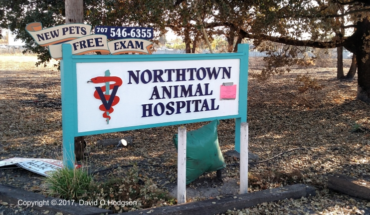 Northtown Animal Hospital Sign