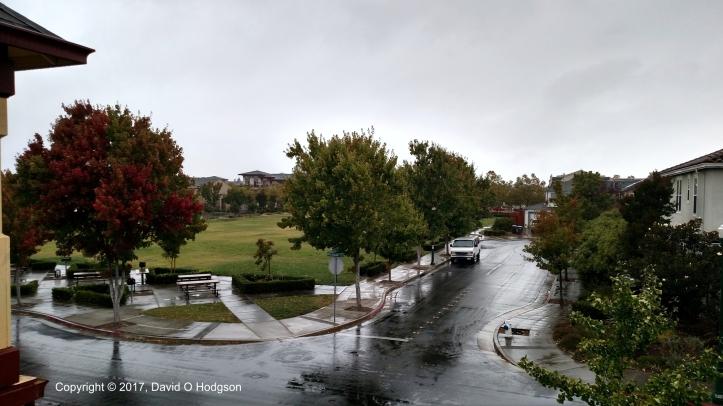 The Rain Begins