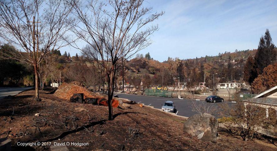 Devastation in Hidden Valley