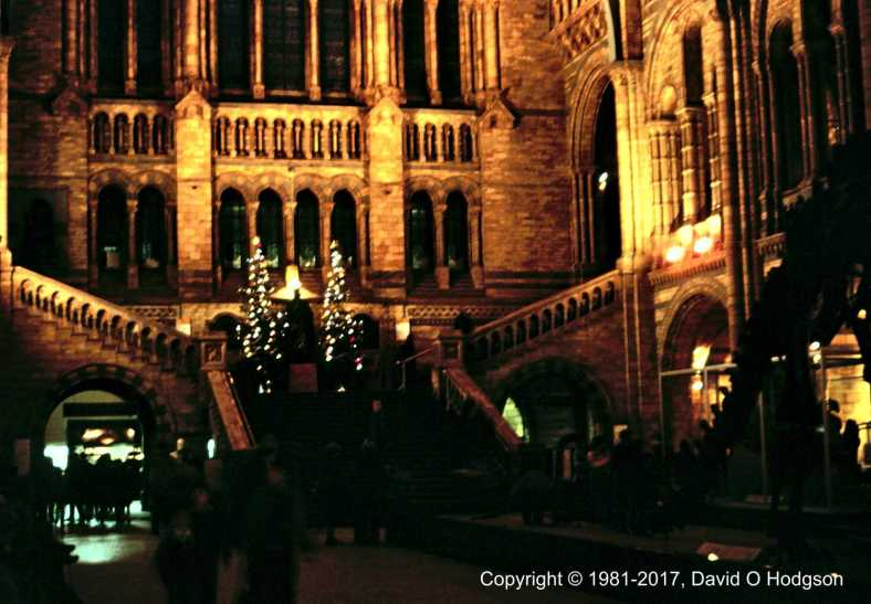 Natural History Museum, London, at Christmas, 1981