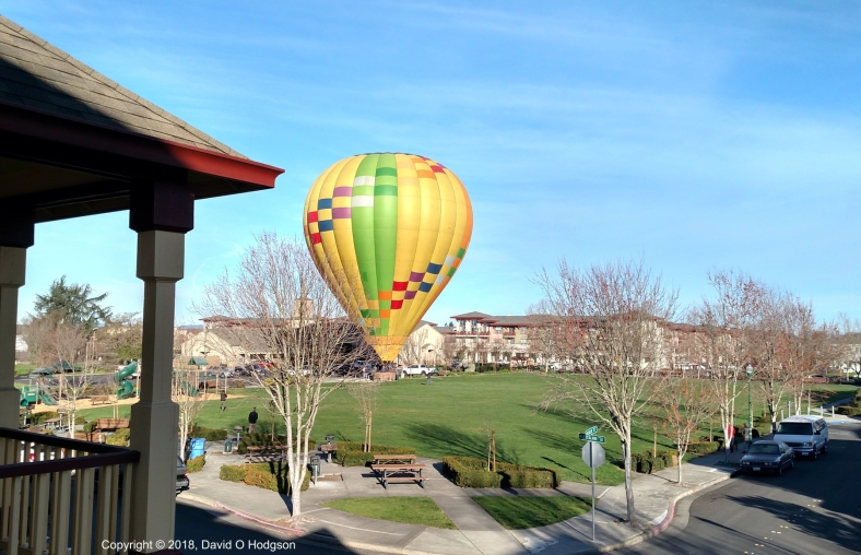 Hot-Air Balloon Force Landed in Village Green Park