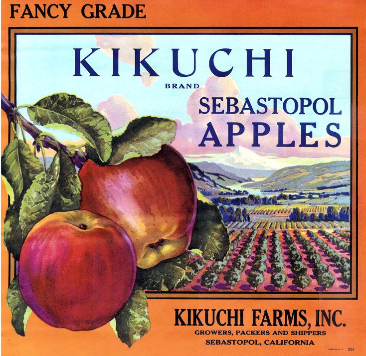 Kikuchi Apples Label