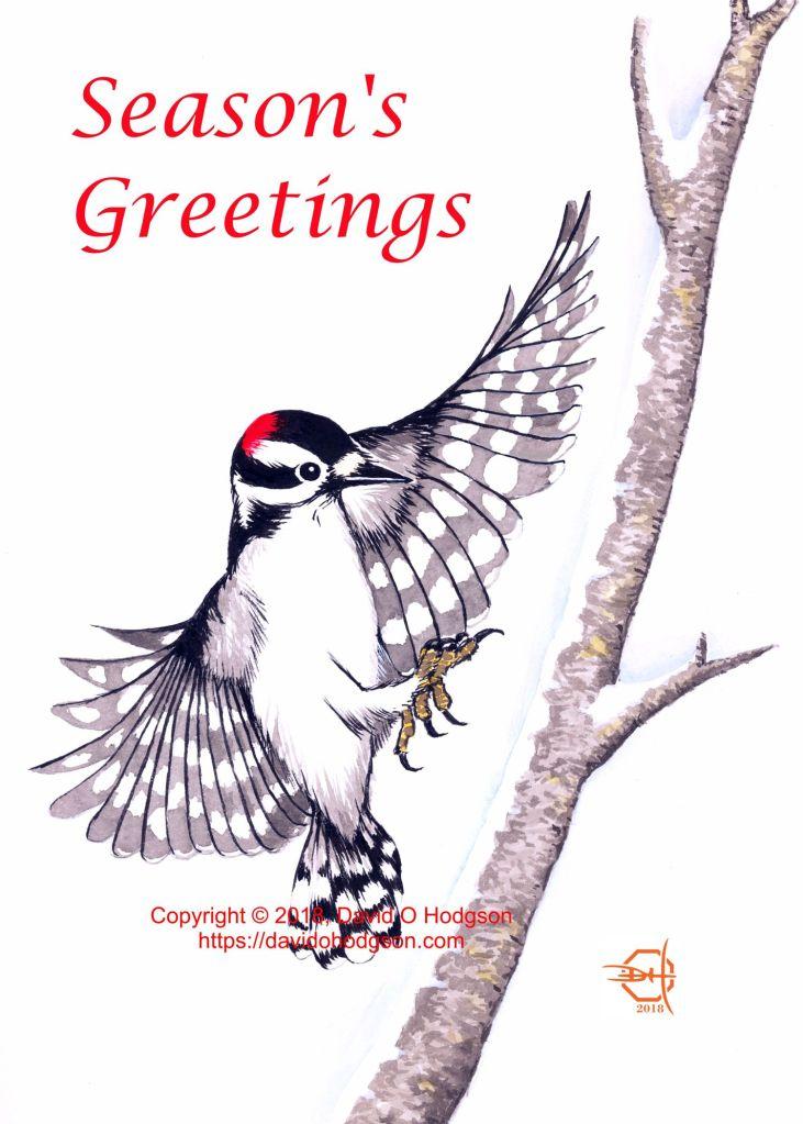 Winter Woodpecker: Ink & Watercolor